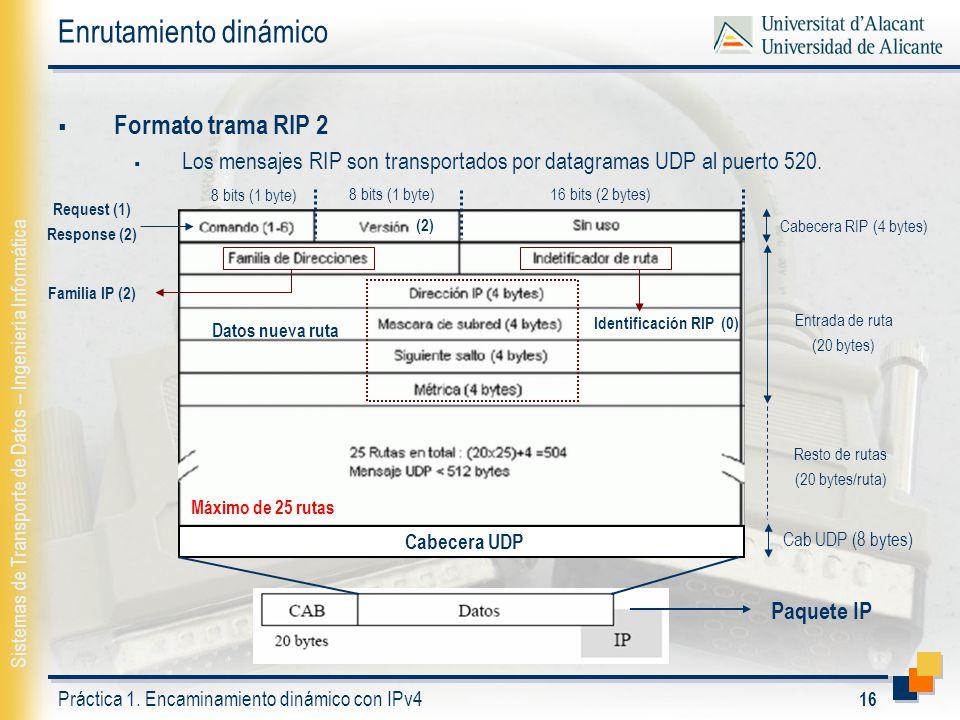 Práctica 1: Encaminamiento dinámico con IPv4. - ppt descargar