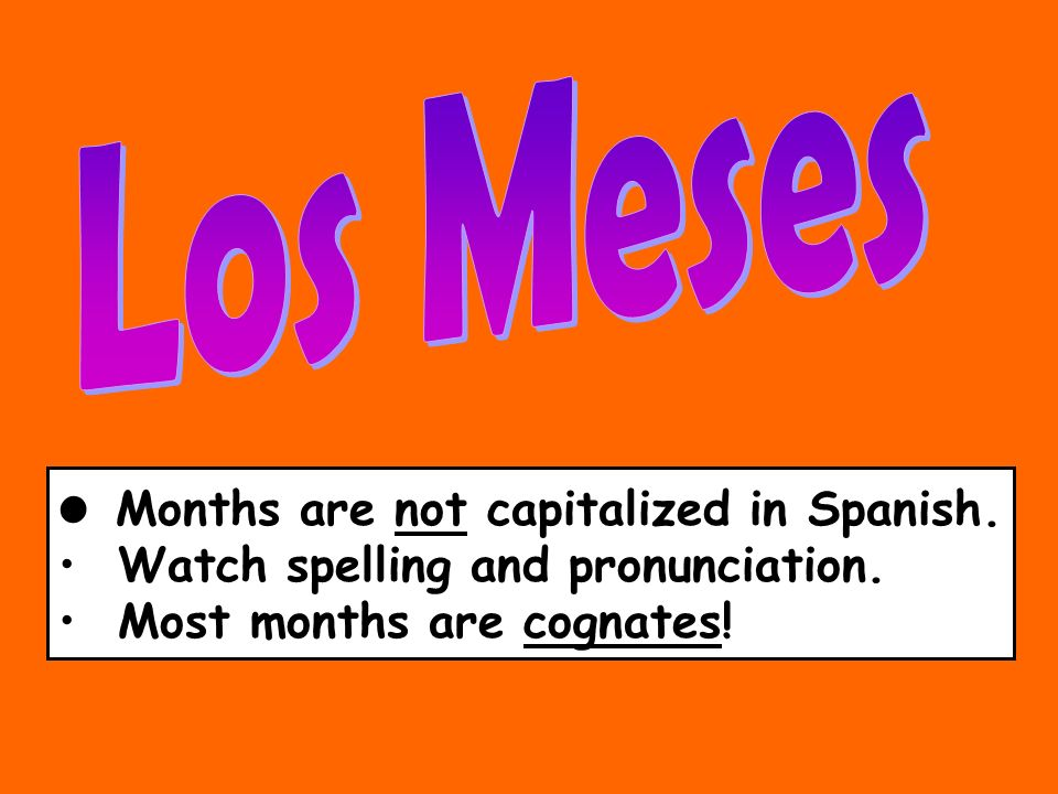 Los Meses Months are not capitalized in Spanish.