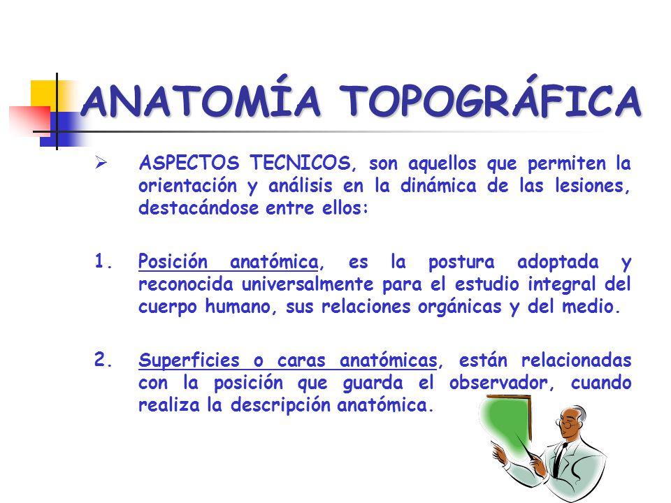 ANATOMÍA TOPOGRÁFICA FORENSE - ppt video online descargar