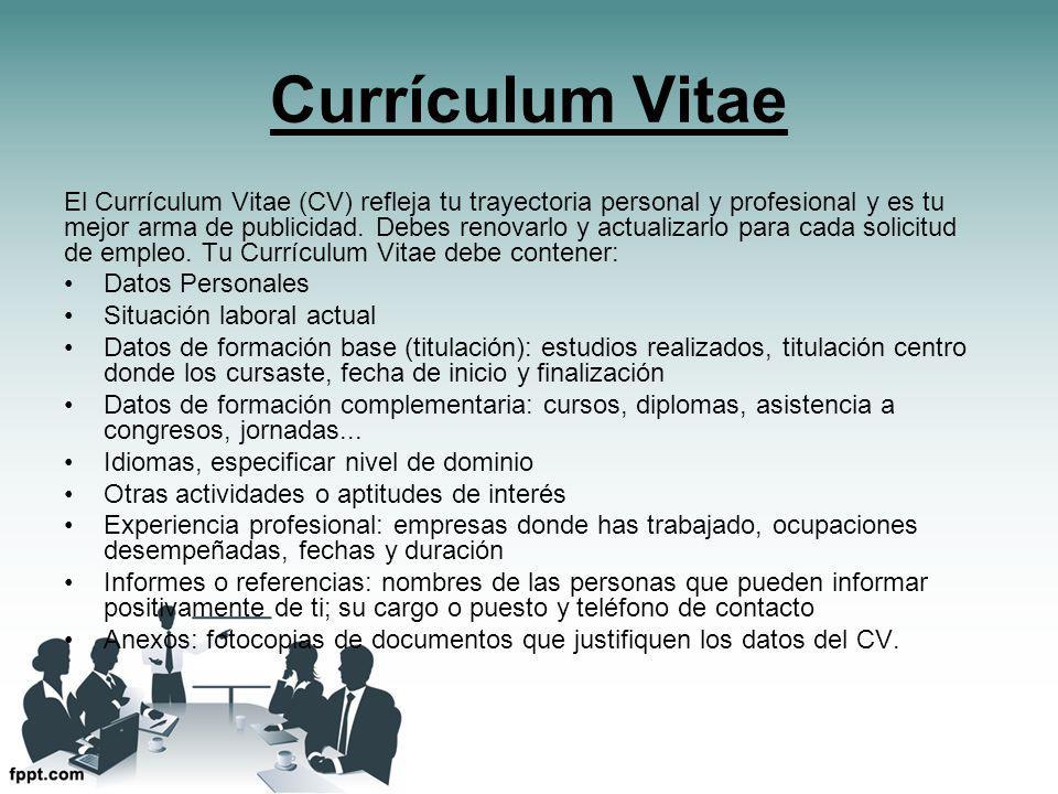 currculum vitae