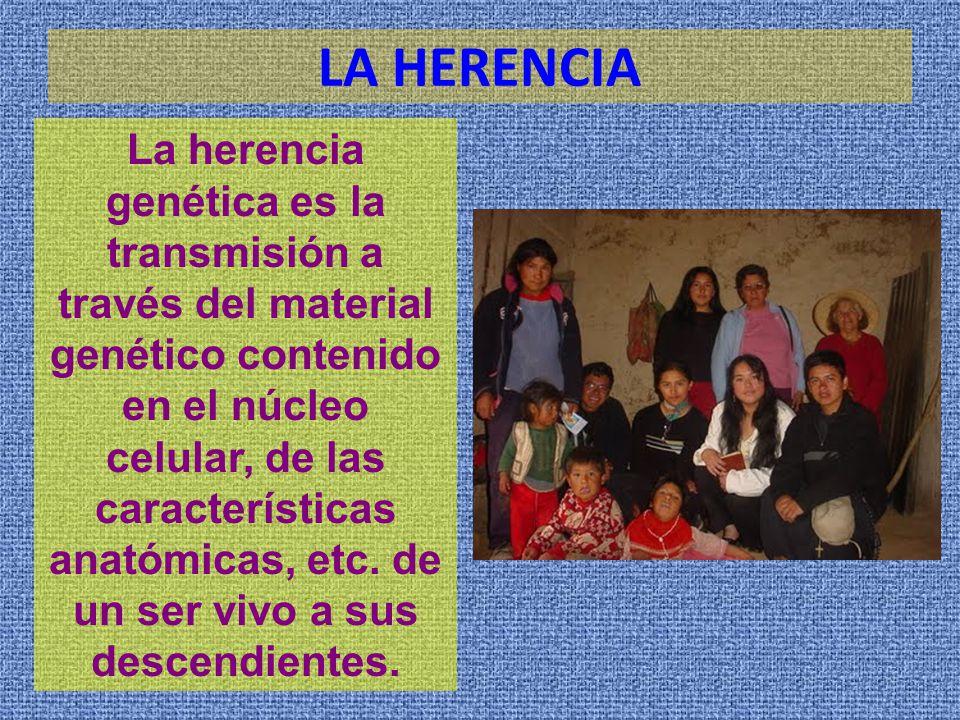 Ms. A. Lic. Enrique Guillermo Zepeda López - ppt descargar