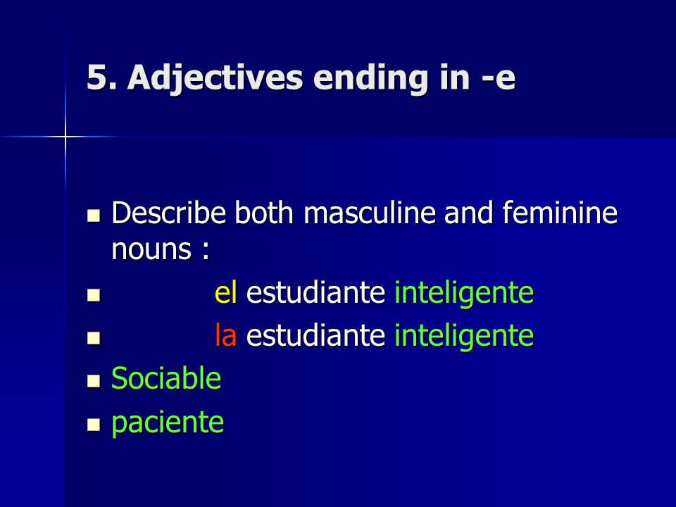 5. Adjectives ending in -e