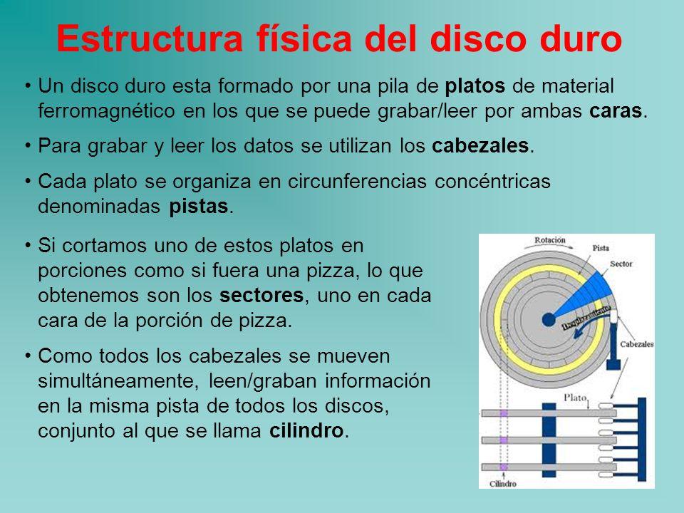Estructura Física Y Lógica De La Información Ppt Descargar
