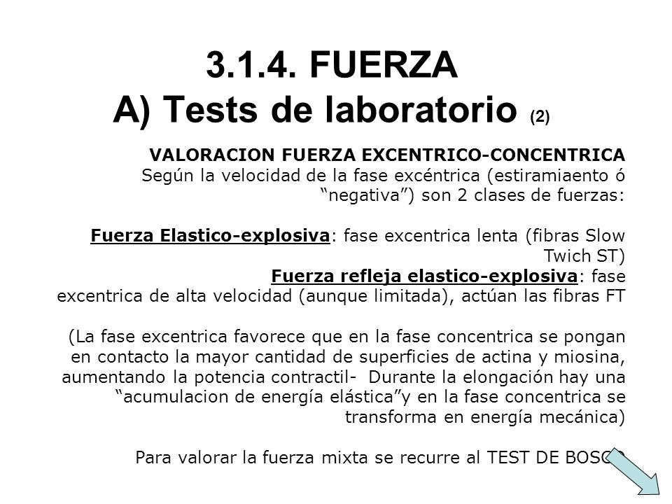 FUERZA A) Tests de laboratorio (2)