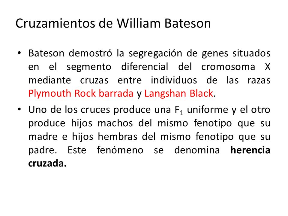 Cruzamientos de William Bateson