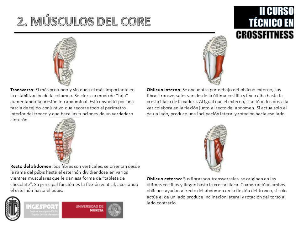TEMA 3. EJERCICIOS DE CORE Bernardino J. Sánchez-Alcaraz - ppt video ...