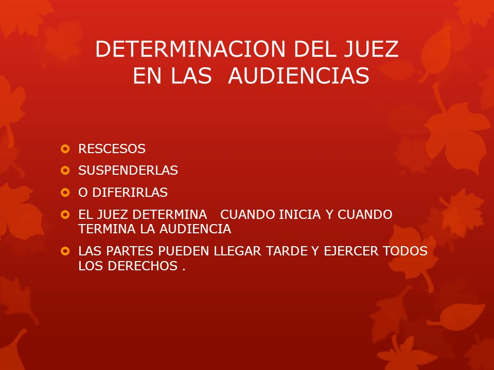 DETERMINACION DEL JUEZ EN LAS AUDIENCIAS