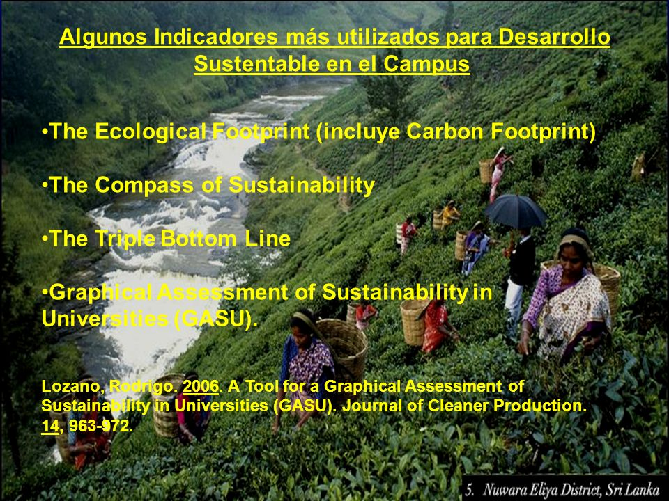 The Ecological Footprint (incluye Carbon Footprint)