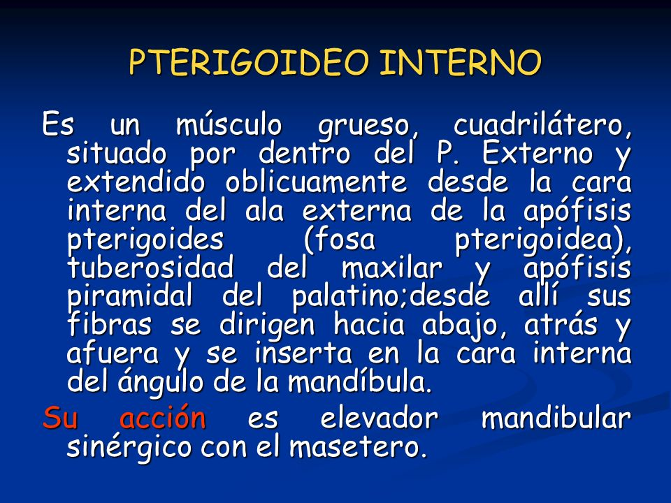 PTERIGOIDEO INTERNO