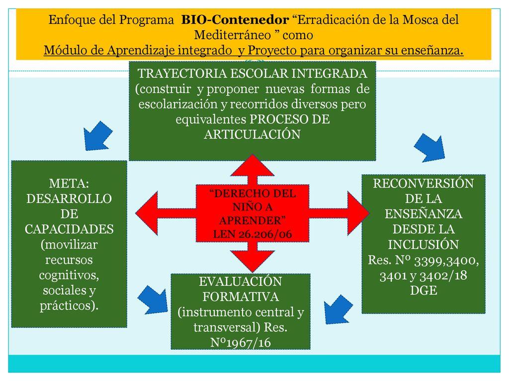 Por Qué Incluir A Bio Contenedor Erradicación De La Mosca