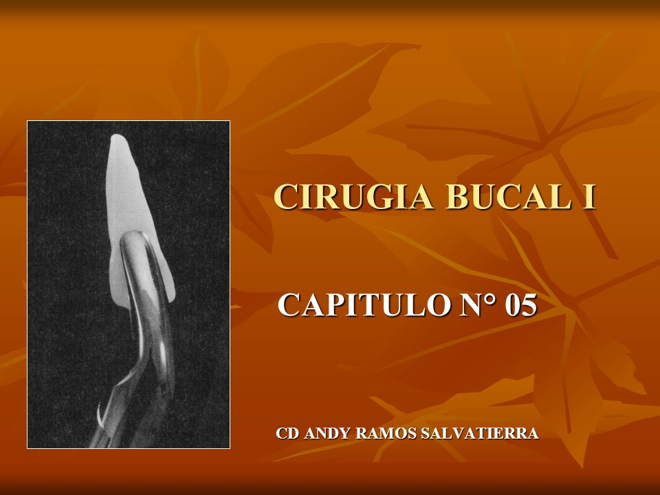 CAPITULO N° 05 CD ANDY RAMOS SALVATIERRA