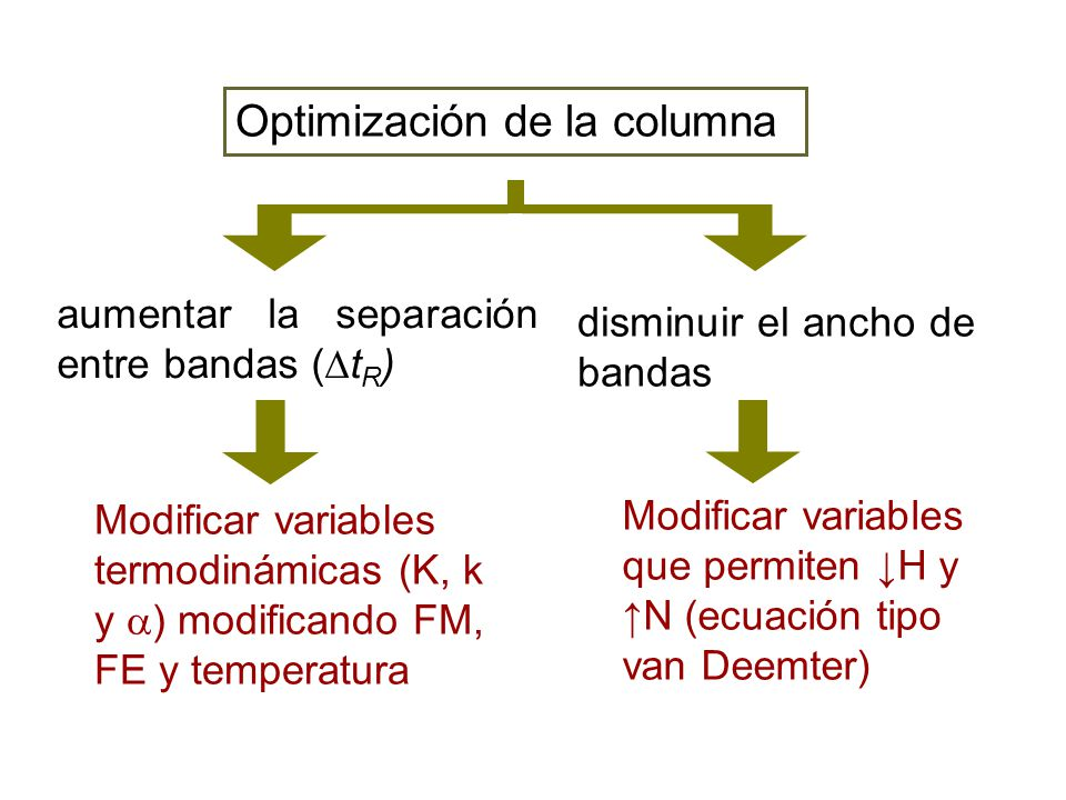 Optimización de la columna