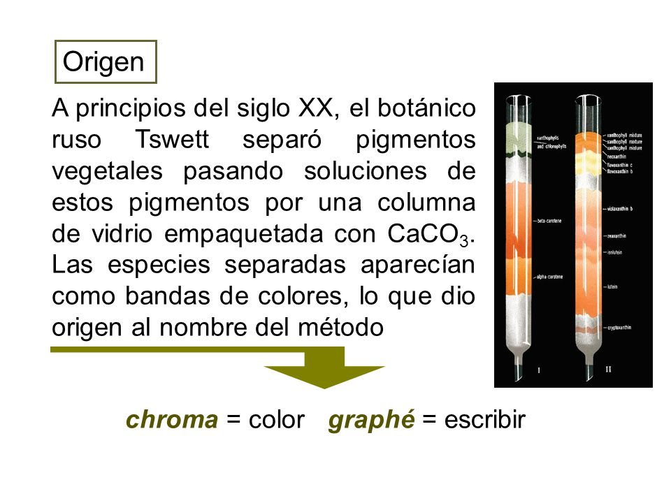 chroma = color graphé = escribir