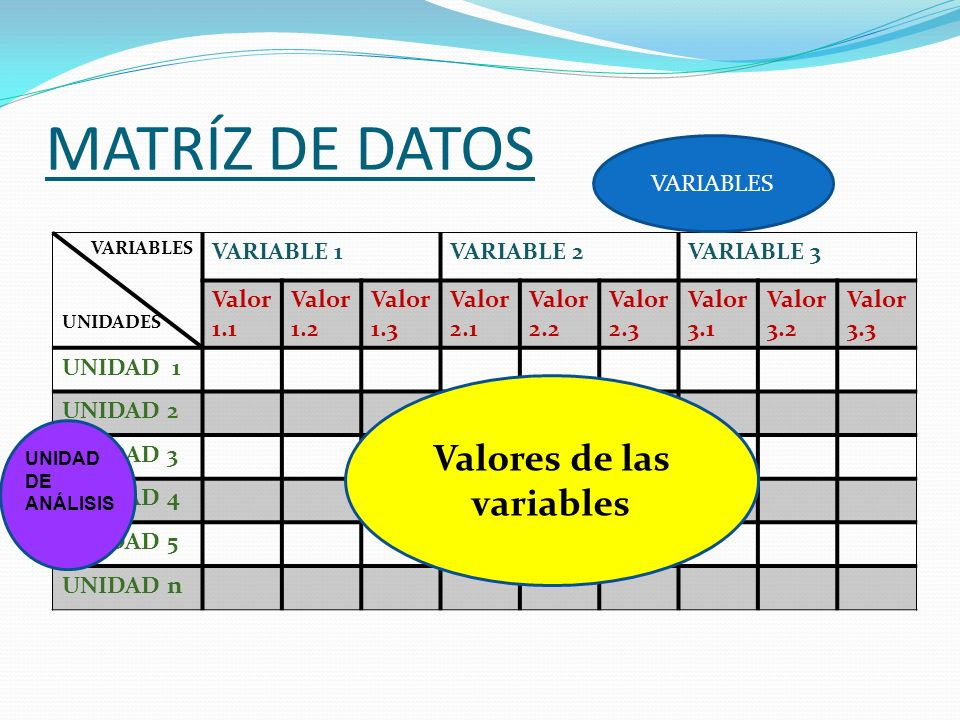 Valores de las variables