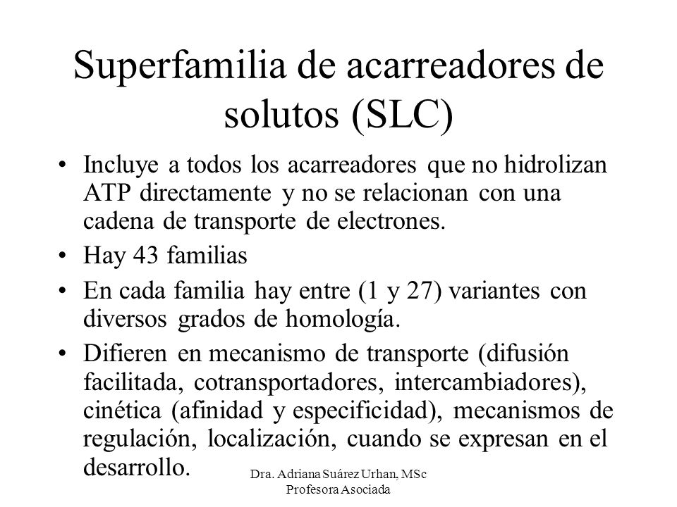 Superfamilia de acarreadores de solutos (SLC)