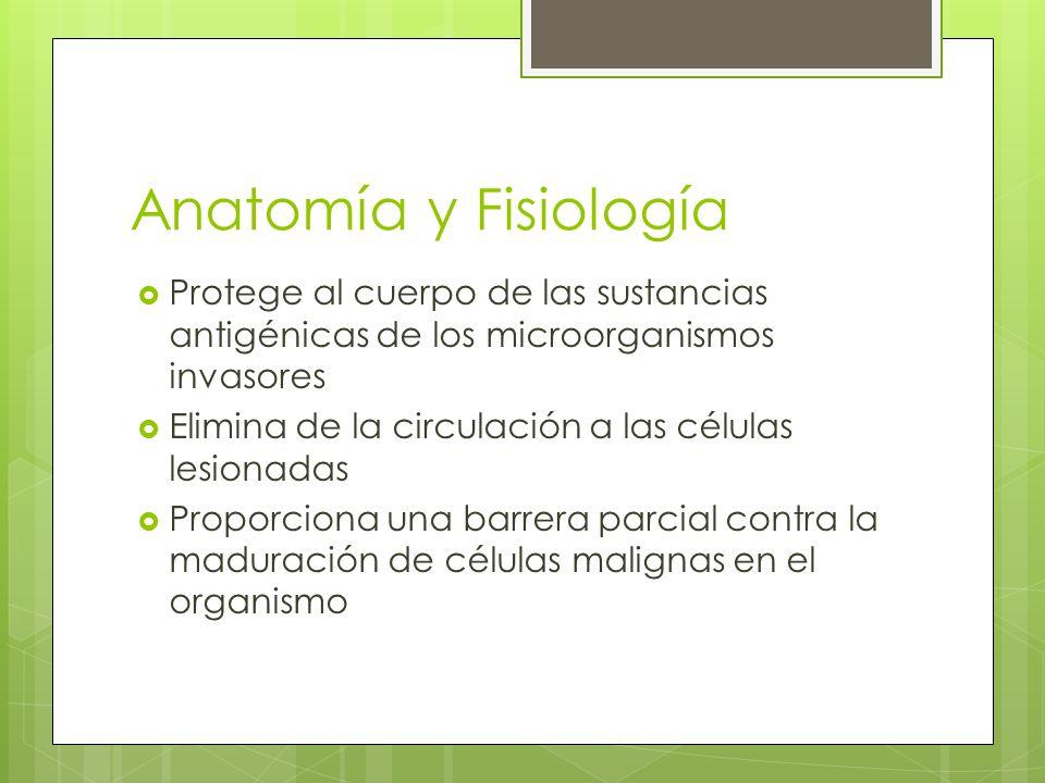 Simulando La Fisiología Del Cuerpo - iPad Contest