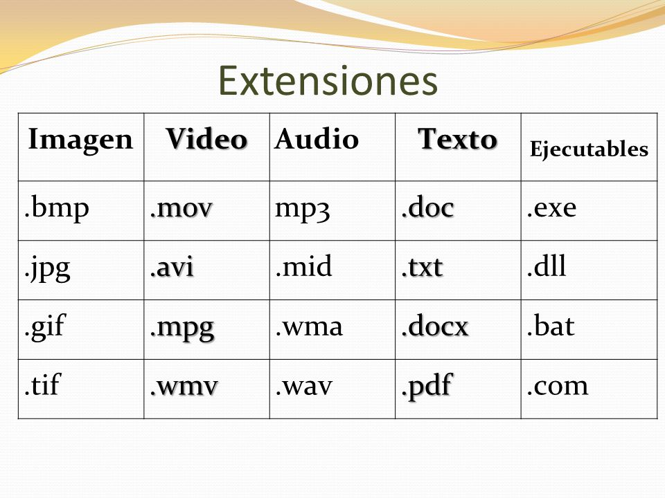Extensiones Imagen Video Audio Texto .bmp .mov mp3 .doc .exe .jpg .avi