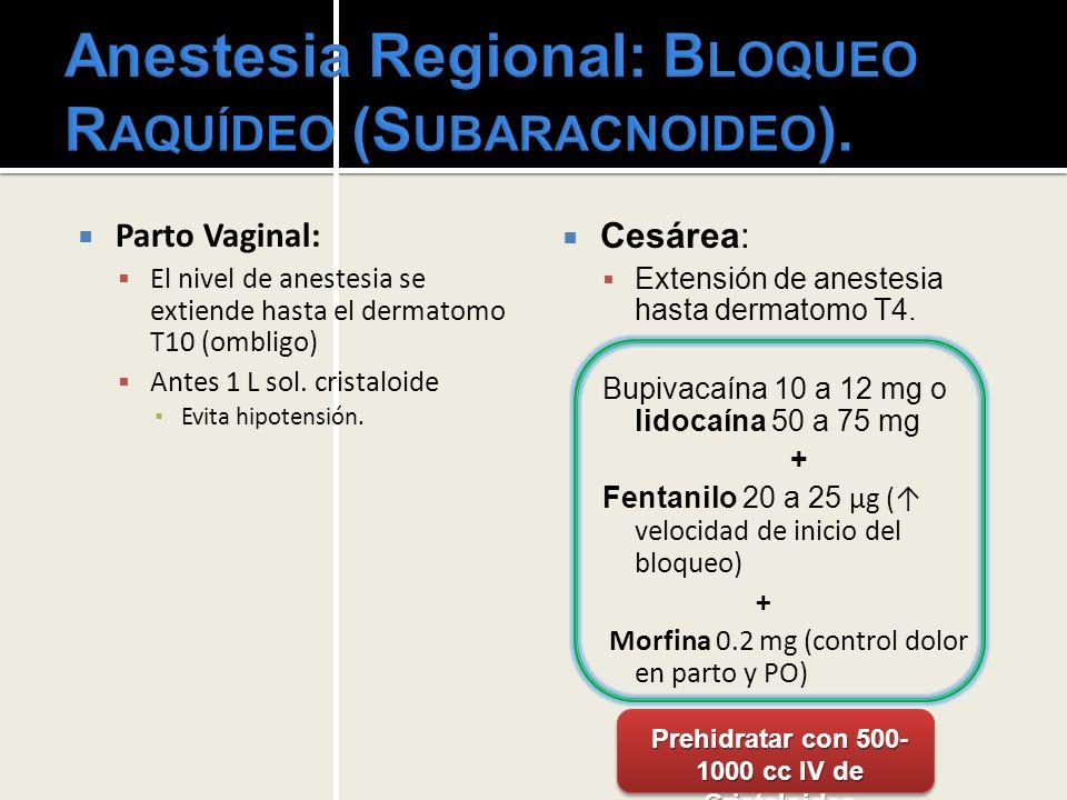 Analgesia y anestesia obstétrica - ppt video online descargar