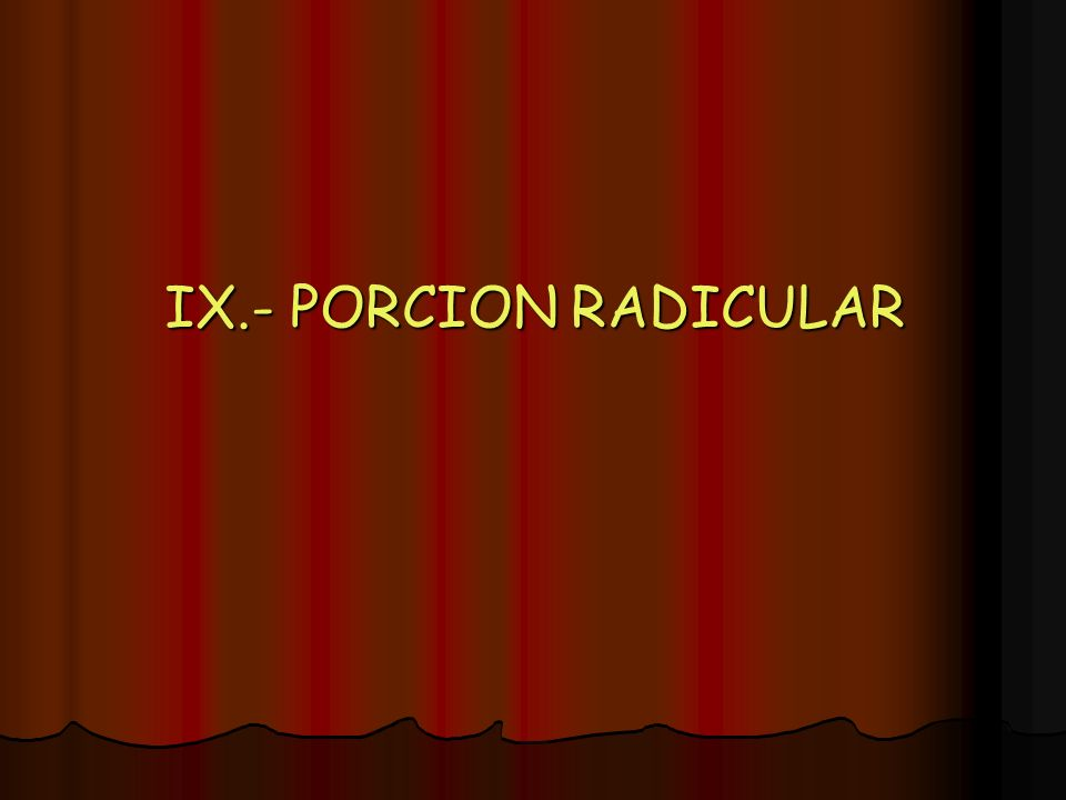 IX.- PORCION RADICULAR