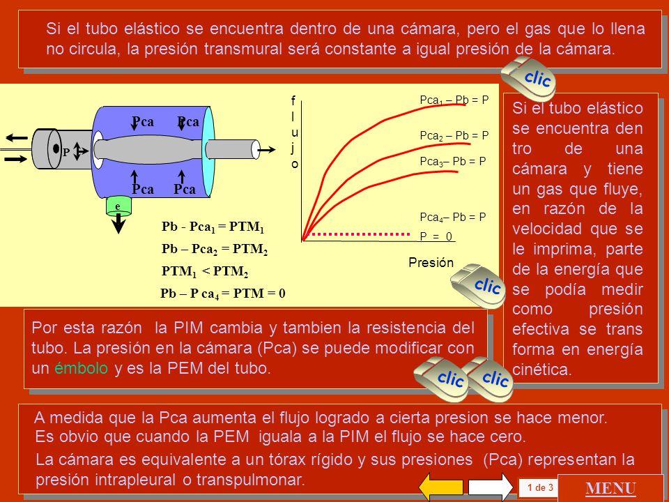 MODELO DE PULMON. - ppt descargar