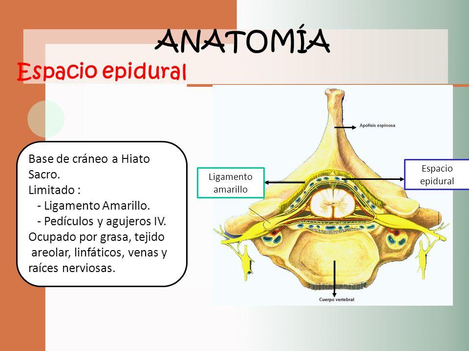 Eliana Castañeda Marín Residente de Anestesiología UdeA - ppt video ...
