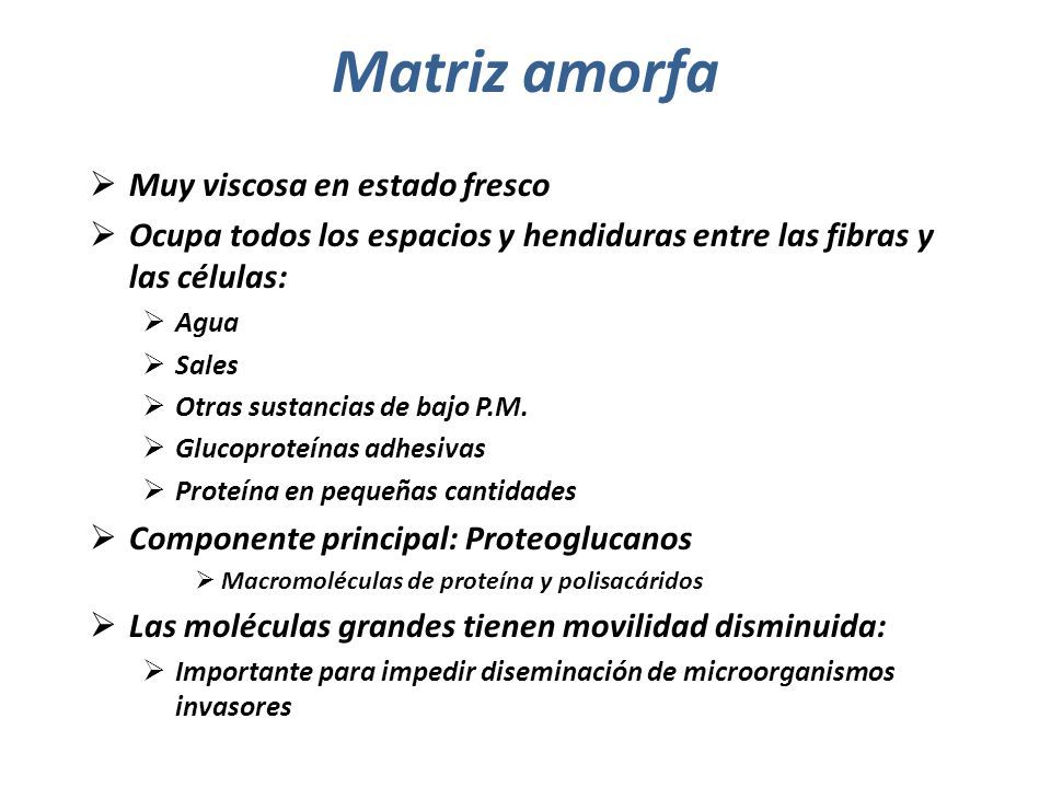 Matriz amorfa Muy viscosa en estado fresco