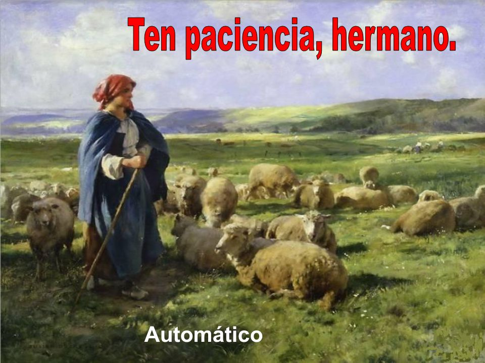 Ten paciencia, hermano. Automático