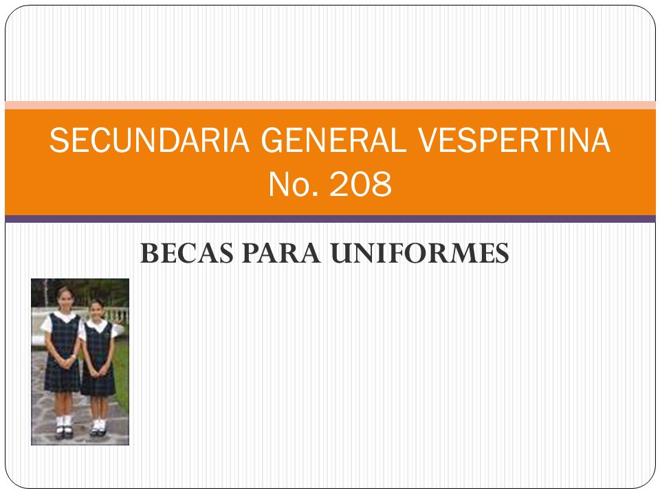 SECUNDARIA GENERAL VESPERTINA No. 208