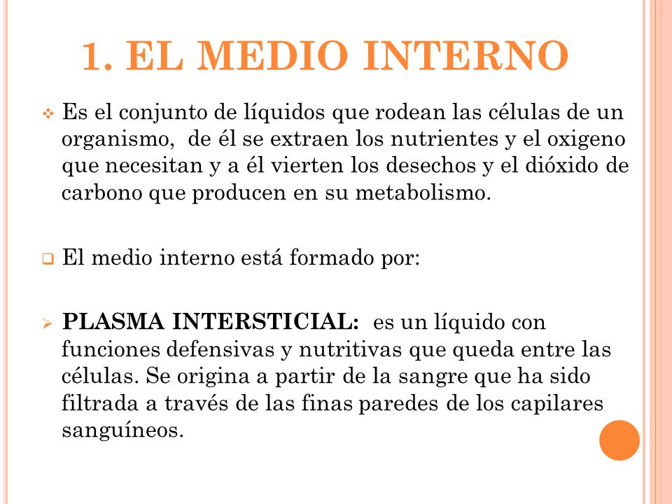 1. EL MEDIO INTERNO