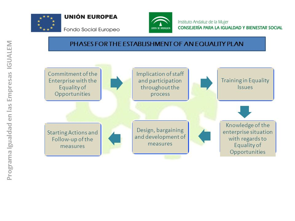 PHASES FOR THE ESTABLISHMENT OF AN EQUALITY PLAN