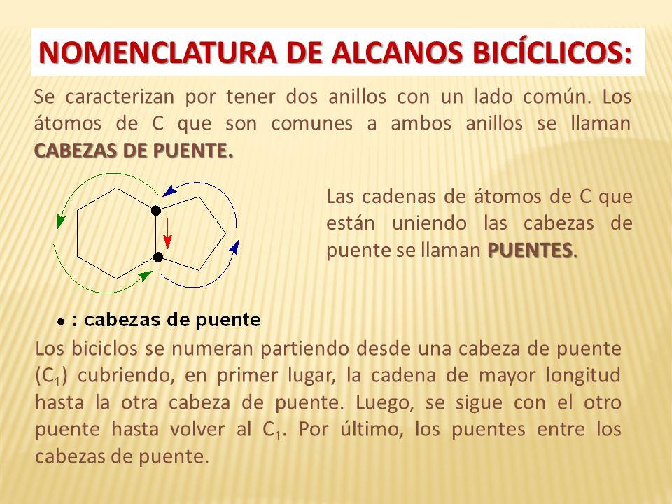 Hidrocarburos Cíclicos - ppt video online descargar