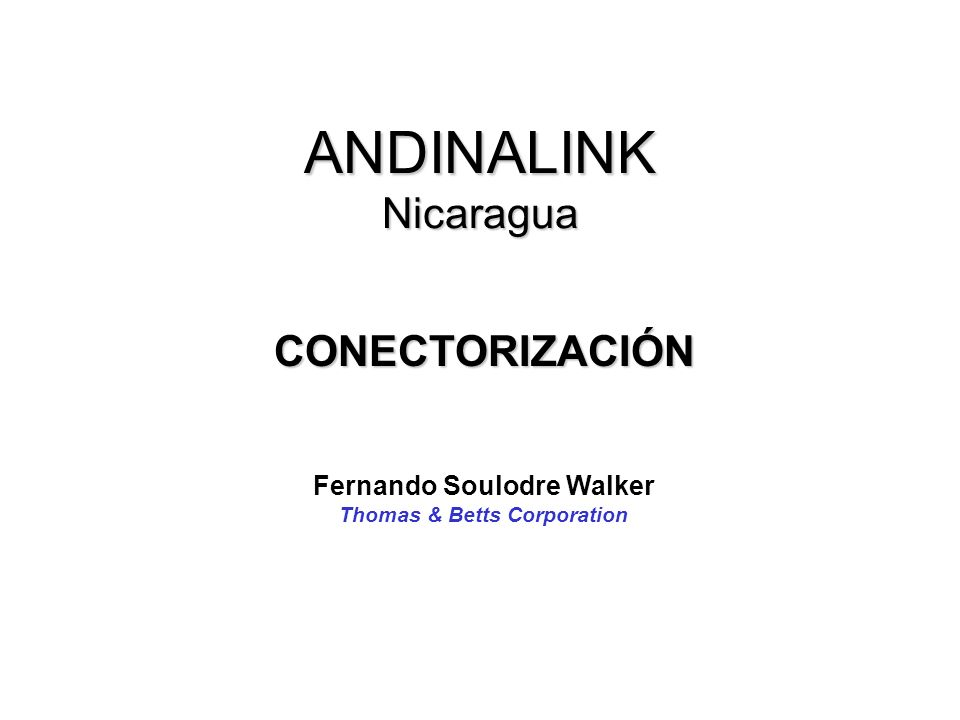 Fernando Soulodre Walker Thomas & Betts Corporation