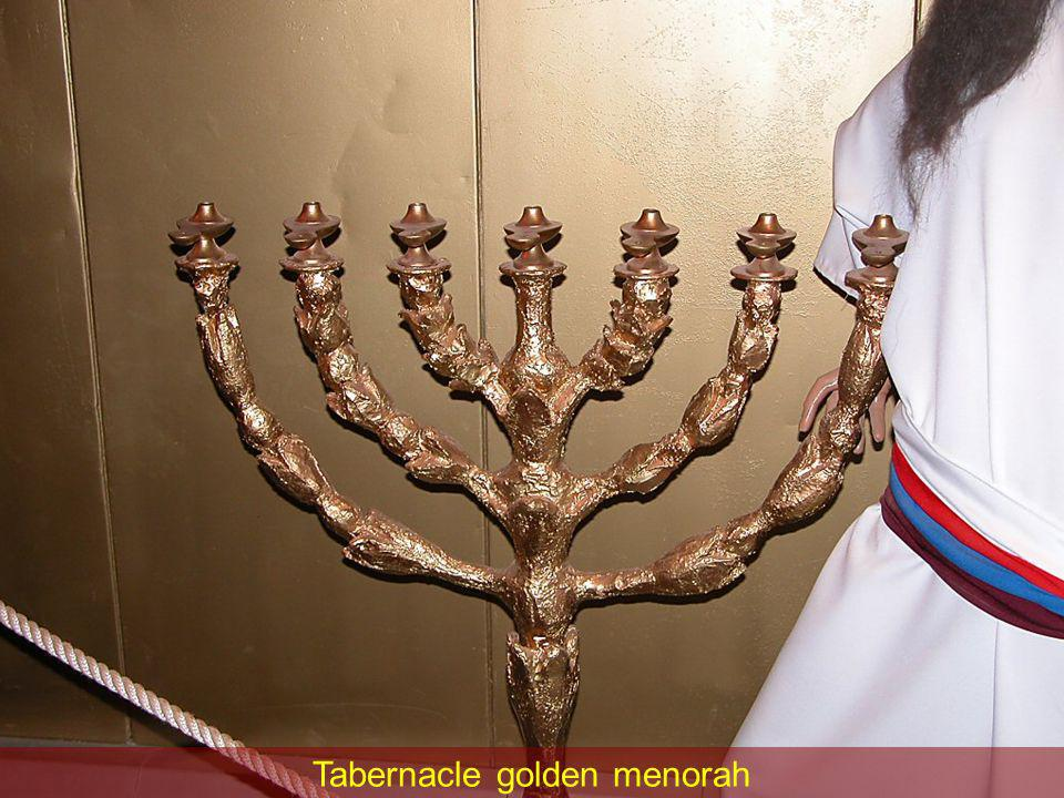 Tabernacle golden menorah