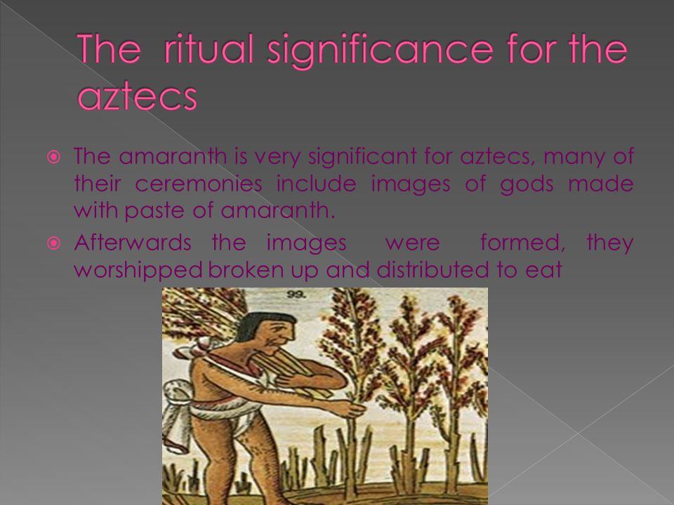 The ritual significance for the aztecs