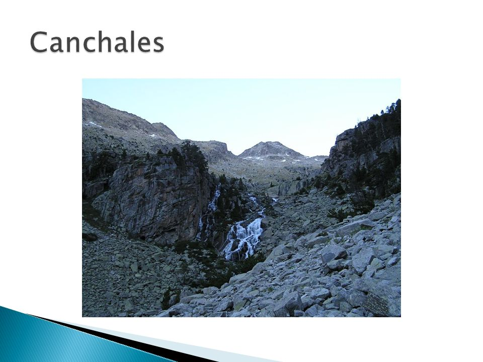 Canchales