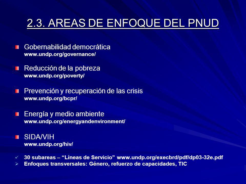 2.3. AREAS DE ENFOQUE DEL PNUD