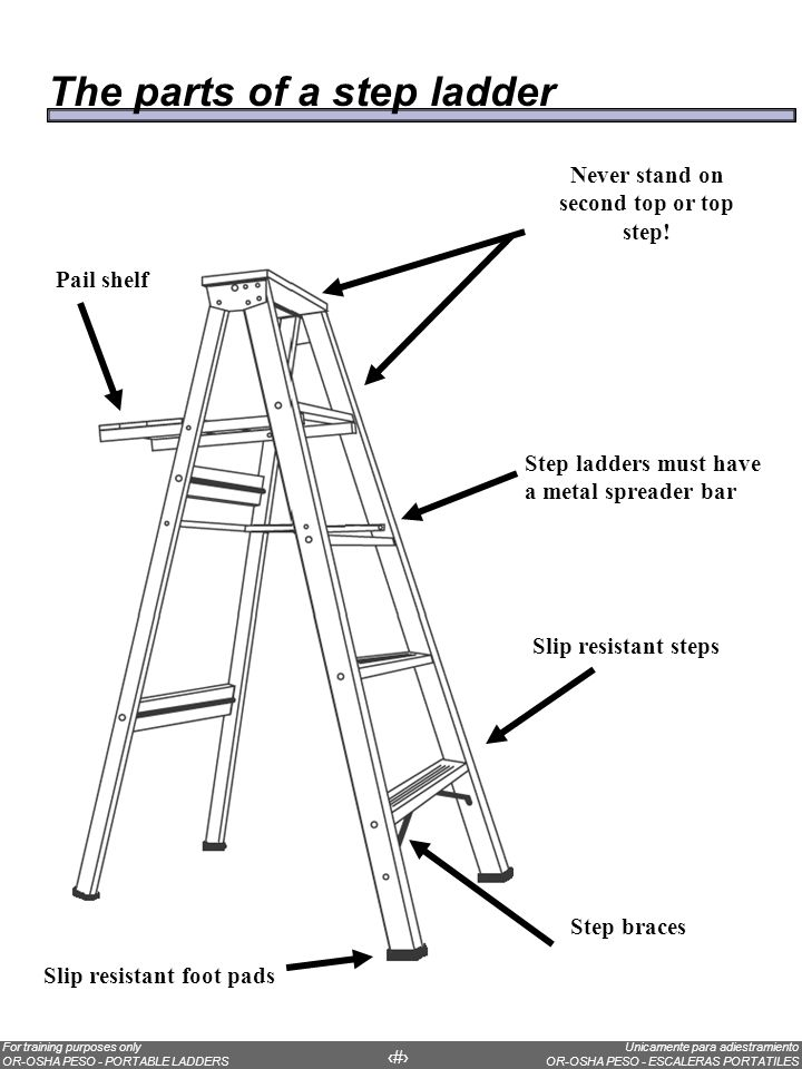 Facts Most workers injured in falls from ladders are less than 10 feet above the ladder´s base.