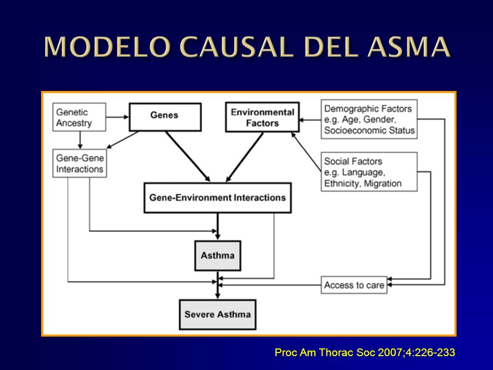 MODELO CAUSAL DEL ASMA Proc Am Thorac Soc 2007;4:
