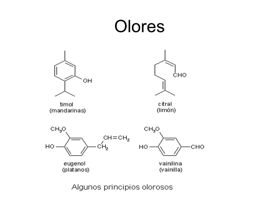 Olores