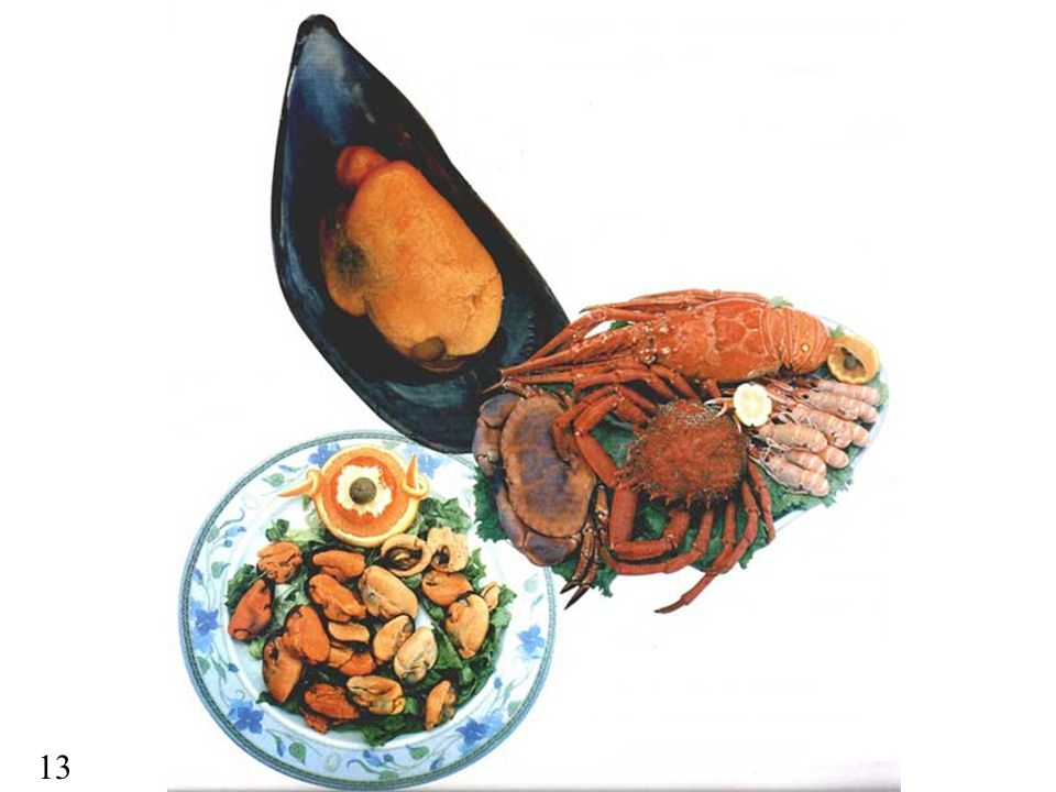 Galicia is very famous because of its seafood