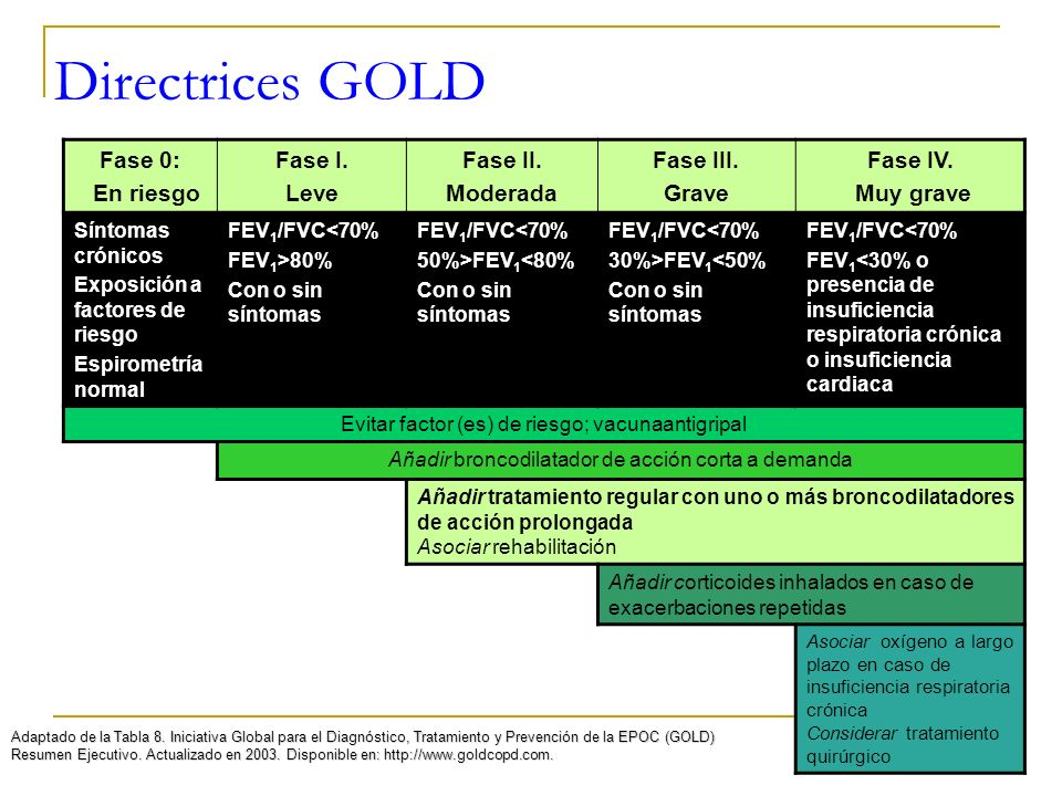 Directrices GOLD Fase 0: En riesgo Fase I. Leve Fase II. Moderada