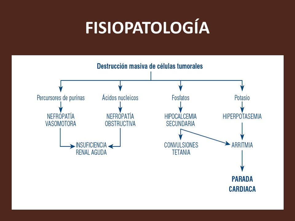 FISIOPATOLOGIA ARRITMIA EBOOK