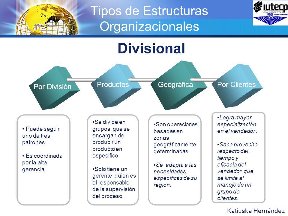 Fundamentos De La Organización Y Sus Principales Elementos