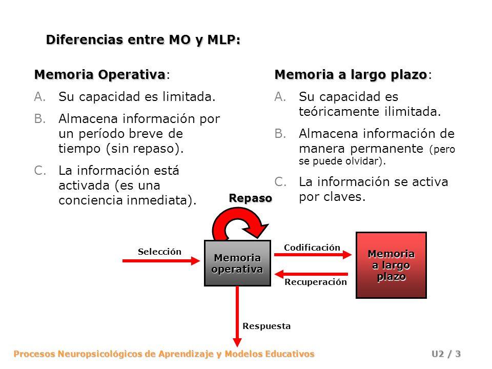 Memoria Operativa A Largo Plazo Recuperacin Respuesta Repaso Seleccin Codificacin Diferencias Entre MO Y MLP
