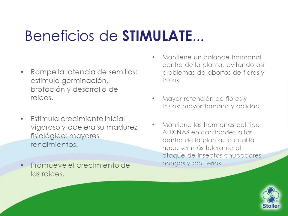Beneficios de STIMULATE...