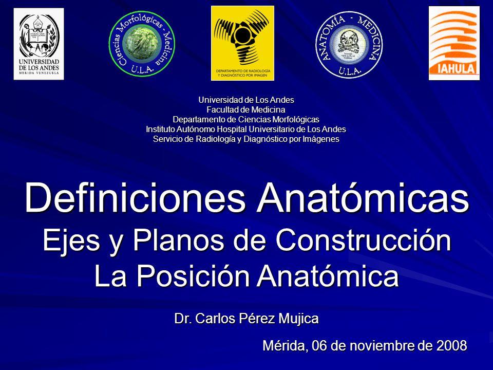 Definiciones Anatómicas Ejes y Planos de Construcción - ppt descargar