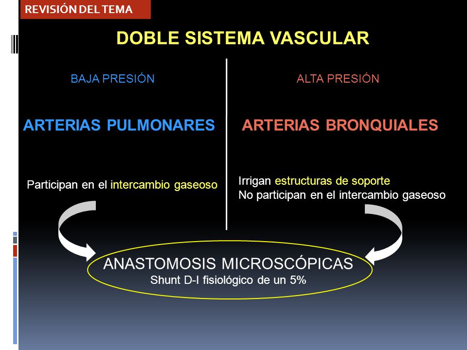 Hemoptisis masiva Maria Jesús Carrillo Guivernau Ana Fernández ...