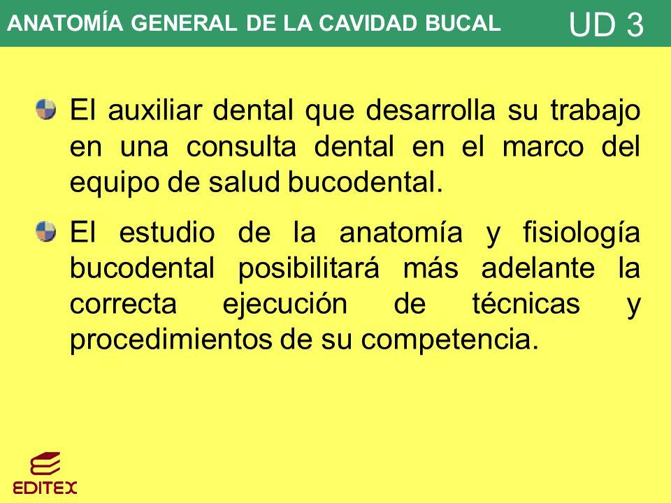 Unidad didáctica 3: ANATOMÍA GENERAL DE LA CAVIDAD BUCAL - ppt descargar