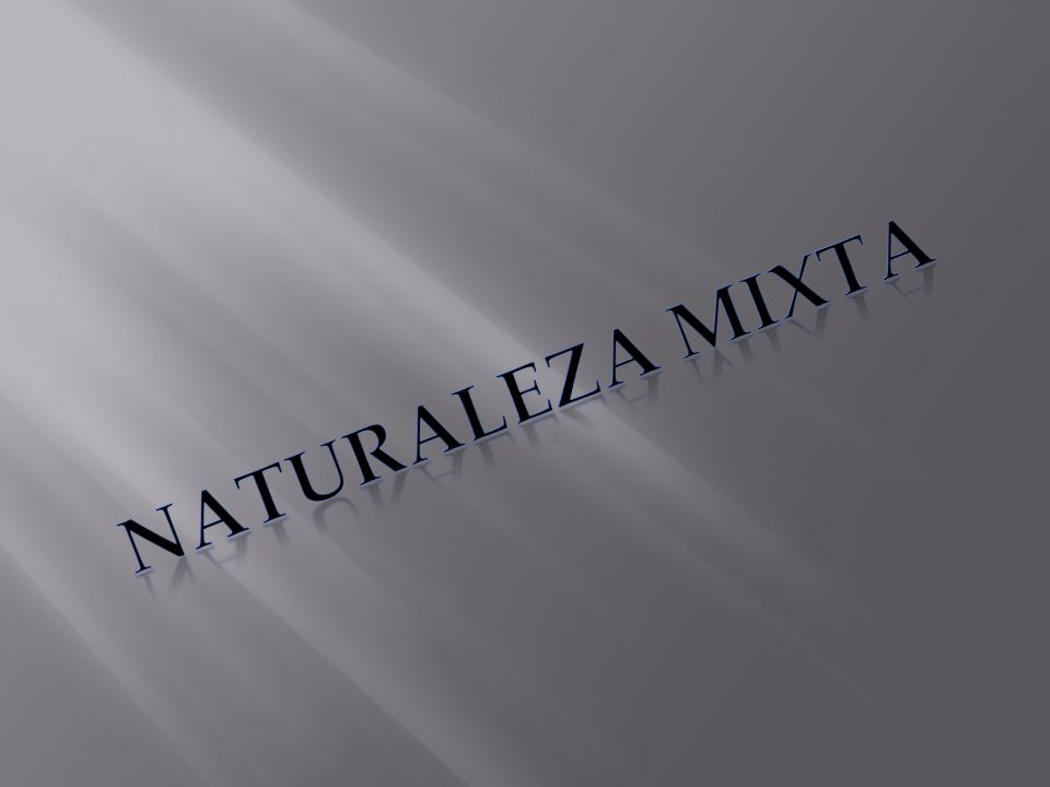 NATURALEZA MIXTA