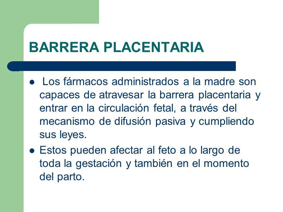 BARRERA PLACENTARIA